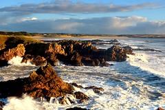 Cruden Scaurs, Aberdeenshire (iancowe) Tags: crudenscaurs crudenskares crudenbay cruden bay scaurs rocks cliff clifftop sunrise swell stormy dawn autumn scotland scottish
