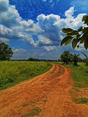 """""""The foot feels the foot when it feels the ground.""""- Buddha (Abeer!) Tags: abeer abeerbarman landscape blue clouds field green grass india bengal westbengal leaves nature path road red sky scenery tree trees village white yellow bolpur soil rural"""