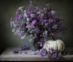 Autumn Splendor (*LiliAnn*) Tags: stilllife flowers pumpkin