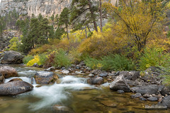 1 Second (kevin-palmer) Tags: bighornmountains bighornnationalforest dayton wyoming tonguerivercanyon tongueriver flowing water autumn fall foliage nikond750 tamron2470mmf28 color colorful trees rapids longexposure circularpolarizer boulders october