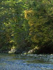 Ein schöner Herbsttag (Renata1109) Tags: wald wasser holz baum bach herbst farben sonne licht lichtspiel wildwasser natur outdoor water light sun morning morgen steine wood tree laub deutschland bayern herbstzeit