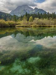 Zelenci nature reserve (vwfaustralia) Tags: reflection water mountain lake calm serene slovenia