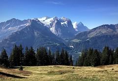 Bernese Alps (PeterCH51) Tags: switzerland hiking alps swissalps alpen berneralpen bernesealps berneroberland berneseoberland hasliberg oberhasli meiringen cantonbern cantonofbern mountains landscape scenery mountainscenery alpinescenery swisslandscape swissscenery alpinelandscape beautifulview iphone peterch51 snowcovered glacier