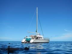 Lucky Lady (kahunapulej) Tags: lucky lady catamaran tour kauai na pali coast snorkel trip boat