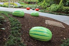 Fake watermelons in children's playground, Brisbane (philip.mallis) Tags: brisbane romastreetparklands park playground citiesforpeople