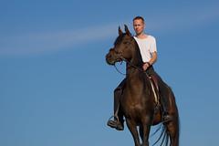 Basim-Q_OS180416 (OliverSeitz) Tags: elbasim wachlarz elda arabian vollblutaraber pferd tier