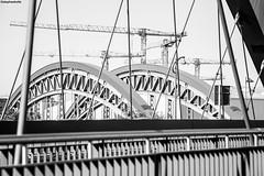 IMG_0244-1ri (kleiner nacktmull) Tags: architecture architektur art kunst blackandwhite bw black blanco blancoynegro canon camera city dslr deutschland brücke bridge europa europe eos foto flickr frankfurtammain flus fluss river frankfurt germany grey gray grau hesse hessen kleinernacktmull kolle kamera lens monochrome monochrom manual manuell m42 nacktmull negro objektiv photo rheinmaingebiet rhein rhine russian russianlens russisch stephankolle stephan stadt schwarzweiss sw schwarz schwarzweis strase street strasse weiss weis white 5dmarkii 5dmkii 5d tair11a tair 135mm ostend honsellbrücke osthafen osthafenbrücke