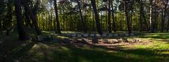 20181016-DSC_4090-Pano (nikontino) Tags: noordwijk sankta begraafplaats