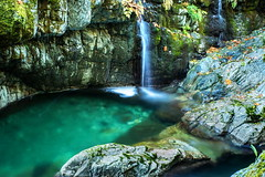 shaw creek-0825 (outdoorsanytime72) Tags: creeks waterfalls shawcreek cowichanvalley vancouverisland