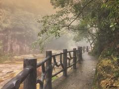 莽山国家森林公园、湖南 Mangshan national park