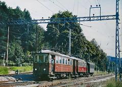 3-car Interurban (en tee gee) Tags: interurban train germany tracks catenary wires trees