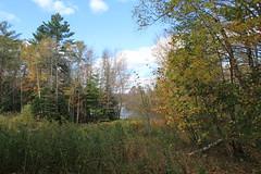 Chittenden, Vermont - 10/16/18 (myvreni) Tags: vermont autumn fall nature outdoors