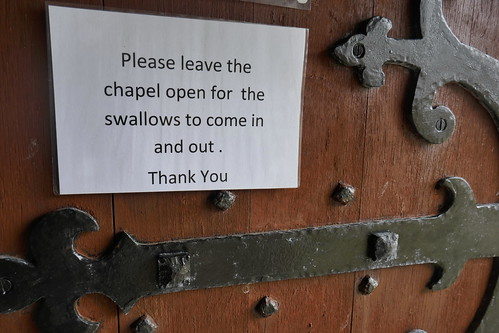 Swallows Sign