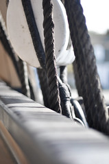 (Kylee Vincent Photography) Tags: mystic mysticct nikon nikond90 50mm bokeh d90 kyleeuliano kyleevincent photography kyleevincentphotography newengland connecticut ct mysticseaport mysticseaportmuseum museum seaport boats seaportmuseum rope ropes sea harbor lobster oars lobstertrap lobstertraps old historic history maritime marina marine sail sailing whaling ship themorgan charleswmorgan vessel water river sails fall autumn charm charming quaint outside wood texture nautical mast helm anchor lines line cable cables whalingship