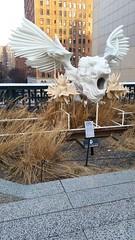 Sphinx Joachim (Joe Shlabotnik) Tags: nyc 2018 galaxys5 newyorkcity cameraphone march2018 sculpture highline manhattan