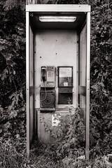 Better days (raymorgan4) Tags: phone box telephone decay ruin fujifilm x100f acros