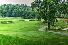 golf pastoral (albyn.davis) Tags: pastoral green grass trees fence golf fairway nature landscape massachusetts usa hdr