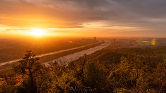 Sonnenaufgang am Leopoldsberg (Robert F. Photography) Tags: