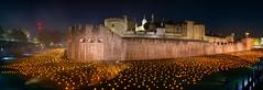 Beyond the Deepening Shadow ##EXPLORED## (.mushi_king) Tags: 100years london armistice memorial remembrance tower fuji fujifilm fujiholics 23mm 23mmf14 fujinon flames fire war soldiers explore explored