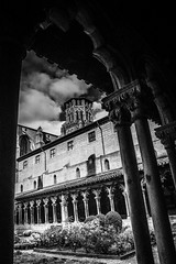 """moody view from cloister to steeple in fine art B&W, Musée des Augustins, Toulouse, Haute-Garonne, Occitanie, France (grumpybaldprof) Tags: canon 80d """"canon80d"""" tamron 16300 16300mm """"tamron16300mmf3563diiivcpzdb016"""" toulouse hautegaronne occitanie france """"4thlargestfrenchcity"""" tolosa airbus thales astrium """"southernfrance"""" """"lagaronne"""" """"garonneriver"""" """"muséedesaugustinsdetoulouse"""" """"couventdesaugustins"""" """"muséedesaugustins"""" """"middleages"""" occitan romanesque sculptures statues art gothic 1309 """"augustinianconvent"""" secularised 1793 """"frenchrevolution"""" museum 1795 """"monumenthistorique"""" cloister garden church gargoyles bw blackwhite """"blackwhite"""" """"blackandwhite"""" noireetblanc monochrome """"fineart"""" ethereal striking artistic interpretation impressionist stylistic style contrast shadow bright dark black white illuminated """"wideangle"""""""