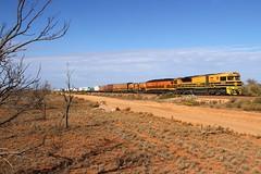 We need fuel ! (Aussie foamer) Tags: gwa004 gwaclass edidowner edi emd gwa geneseewyomingaustralia northgate tarcoola southaustralia train railway locomotive rpausagwaclass rpausagwaclassgwa004