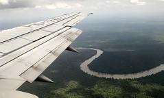 The approach to Borneo (josepsalabarbany) Tags: borneo kalimantan indonesia jungle wildlife monkey orangutan proboscismonkey nasalislarvatus tanjungputing river riu nationalpark boat klotok barca