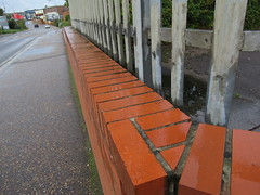 Sunday, 23rd, Wet wall IMG_6446 (tomylees) Tags: lakesroad wall raining braintree essex september 23rd 2018 sunday project 365