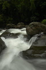 Rainforest stream (pbertner) Tags: stream rainforest southamerica valledelcauca colombia landscape