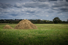 End of haymaking. Manual hay making in haystacks (ivan_volchek) Tags: agriculture bale cloud clouds country countryside crop environment farm field flora grass grassland green harvest hay hayfield haystack landscape meadow nature outdoors rural scenic sky soil straw summer tree