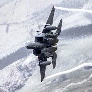 Eagle in the Snow (Madhatters)