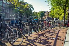 I want to ride my bicycle! (Udri) Tags: bici bicicleta viaje amsterdam bicycle holanda holland k3 netherlands pentax travel trip