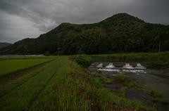 My ideal hometown. (Yasuyuki Oomagari) Tags: 田舎の風景 mountain country countryside utopia hometown rural japan kumamoto nikon d850 zeiss distagont2821 kyushu 日本 田舎 九州 熊本県