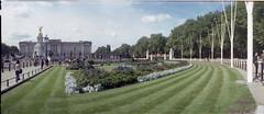 Buckingham Palace (Todron) Tags: kmz kmzhorizont horizont panorama panoramica panoramic filmcamera film wide wideangle grandangolo 35mm fuji fujifilm c200 fujifilmc200 200asa negativefilm c41 epson epsonv600 v600 londra london greatbritain unitedkingdom buckinghampalace
