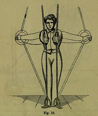 This image is taken from Page 344 of Weak lungs, and how to make them strong, or Diseases of the organs of the chest : with their home treatment by the movement cure (Medical Heritage Library, Inc.) Tags: tuberculosis calisthenics lung diseases medicalheritagelibrary cushingwhitneymedicallibrary americana date1864 id39002055096649medyaleedu