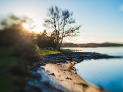 October sunset at Hasseltangen (Birgit F) Tags: 2018 fevik lensbaby norway olympus olympusem10 sol22 hasseltangen october2018 oly photobirgitfostervold seeinanewway