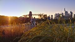 (majobu) Tags: sunset frankfurtammain ostend osthafen skyline