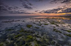 lights. (Through Bri`s Lens) Tags: sussex sunset seaweed rocks skies worthingpier brianspicer canon5dmk3 canon1635f4 leefilters