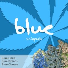 blue-mixpack-marijuana-seeds-ilgm_large (Watcher1999) Tags: blue cheese haze dream cannabis seeds marijuana medical growing plant strain weed weeds smoking ganja legalize it