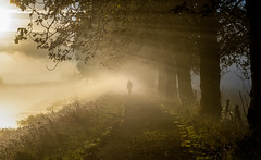 Early Morning Rays (Glenn Cartmill) Tags: sun rays northern ireland uk unitedkingdom mist countyarmagh october sonya7iii portadown towpath early morning outside river bann misty foggy trees path footpath