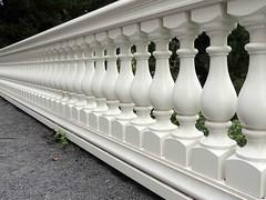 Fancy fence. (Shahrazad26) Tags: landgoedclingendael clingendael fence barrière hek denhaag sgravenhage thehague lahaye nederland holland thenetherlands paysbas zuidholland