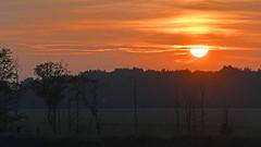 Sonnenuntergang am Zingster Bodden (karinrogmann) Tags: sonnenuntergang sunset tramonto zingsterbodden ostsee
