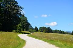 Walking  To Malga Sella [Borgo Valsugana - 23 June 2018] (Doc. Ing.) Tags: 2018 trentino trentinoaltoadige valsugana borgovalsugana tn nordest artesella malgacosta mountains dolomites thecontemporarymountain road