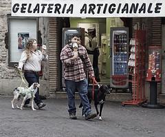 Ein kleines Eis (ingrid eulenfan) Tags: italien italy italia gardasee sirmione lombardei people menschen leute hunde eis ice ghiaccio hund geschäft eisdiele laden street strase