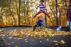 They were some happy kiddos (Elizabeth Sallee Bauer) Tags: active autumn beautyinnature boy child childhood fall fun jumping kid leaves outdoors outside playing trampoline trees youth