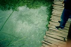 (dramatolog) Tags: igorripak igorripakphotography wwwigorripakcom dramatolog sarenikaravan šarenikaravan diaries storytelling pointandshoot yashicat4 t4 carlzeisstessar kodakgold kodak plitvicelakes plitvičkajezera fish water lake