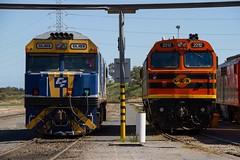 MPC gets a CFCLA visitor (Aussie foamer) Tags: gl103 glclass 2212 22class 42212 422class 44228 442class alco clyde emd ge generalelectric ugl goninan nswgr newsouthwalesgovernmentrailways sra staterailauthorityofnewsouthwales freightrail freightcorp cfcla asr australiansouthernrailroad arg australianrailroadgroup gwa geneseewyomingaustralia mpc motivepowercentre drycreek southaustralia train railway locomotive rpauglclass rpauglclassgl103 rpau22class rpau22class2212