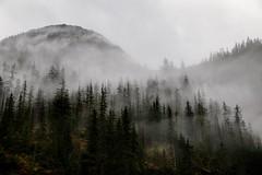 Misty (WayneG58) Tags: landscape cruise atmosphere mountains trees fog mist juneau insidepassage alaska