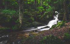Ysperklamm (Rene Wieland) Tags: ysperklamm waterfall wasserfall nature natur landschaft hiking wanderlust austria waldviertel longexposure wald forest green outddor österreich