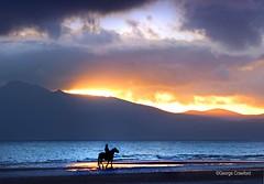 Sunset and Horse (g crawford) Tags: seamill westkilbride ayrshire northayrshire ardneil bay ardneilbay beach seamillbeach arran sunset sundown gloaming clyde riverclyde firthofclyde sea seaside horse rider silhouette orange yellow