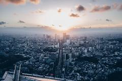 Metropolitan Sunset (Bunaro) Tags: tokyo roppongi hills mori tower metropolitan japan asia skyscraper sunset purple yellow warm light shadows cityscape urban landscape futuristic city magnificent view dawn nihon nippon m50 canon